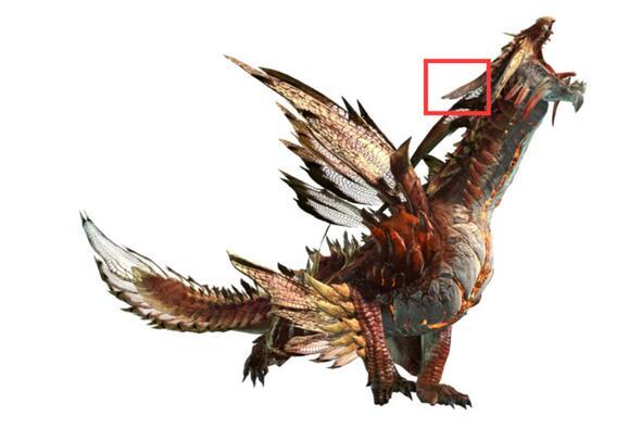 怪物猎人ol星龙吃眠肉吗 祸星龙吃不吃眠肉图片