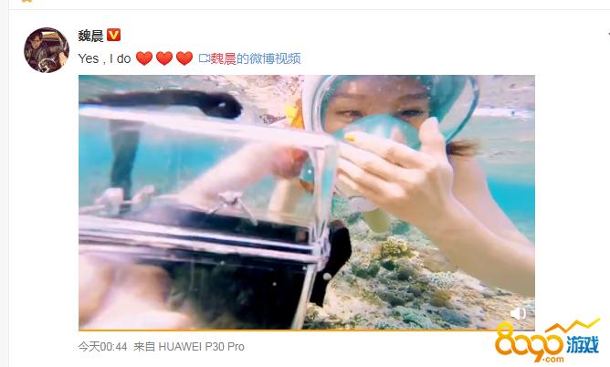 魏晨成功求婚视频高清在线观看